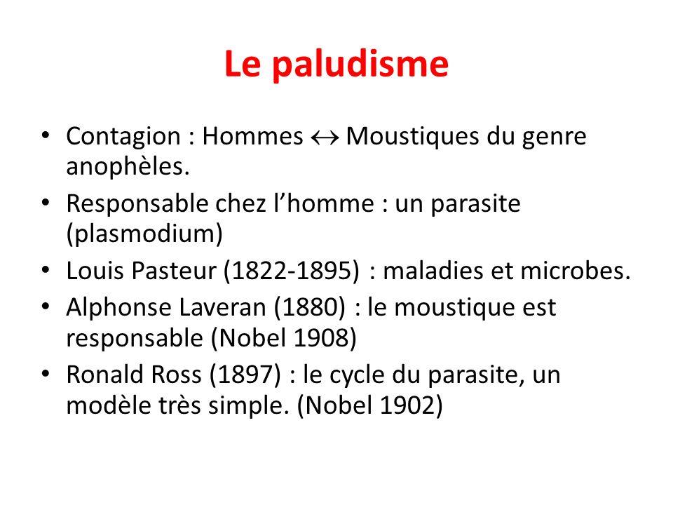 Le paludisme Contagion : Hommes  Moustiques du genre anophèles.