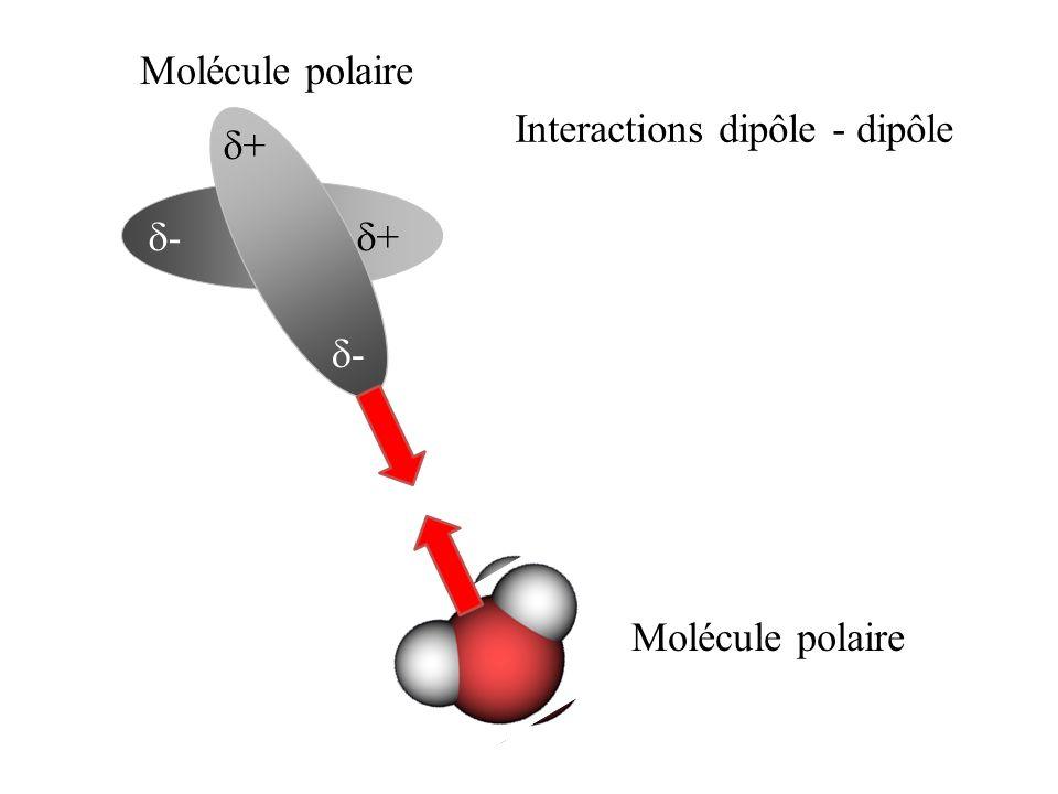 Molécule polaire Interactions dipôle - dipôle d+ d- d+ d- Molécule polaire