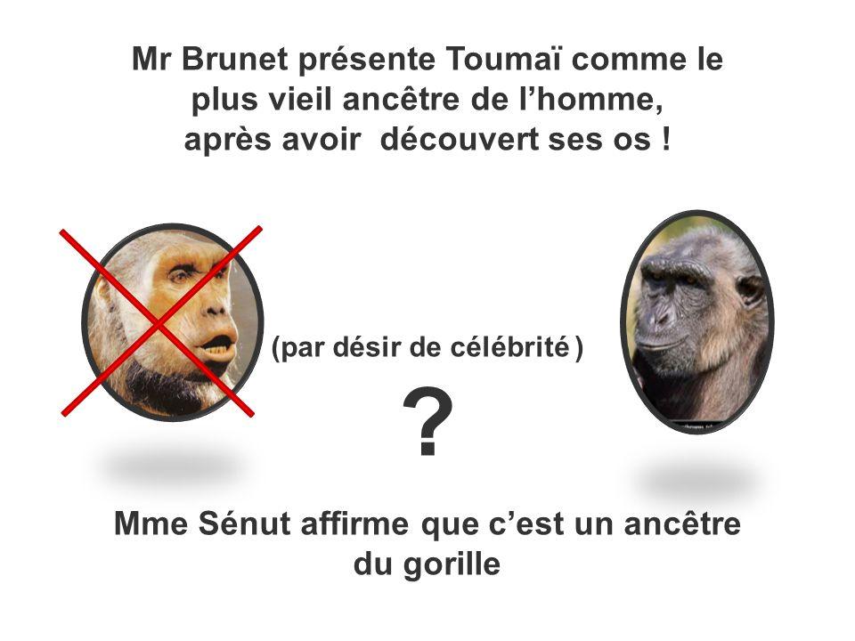 Mr Brunet présente Toumaï comme le plus vieil ancêtre de l'homme,