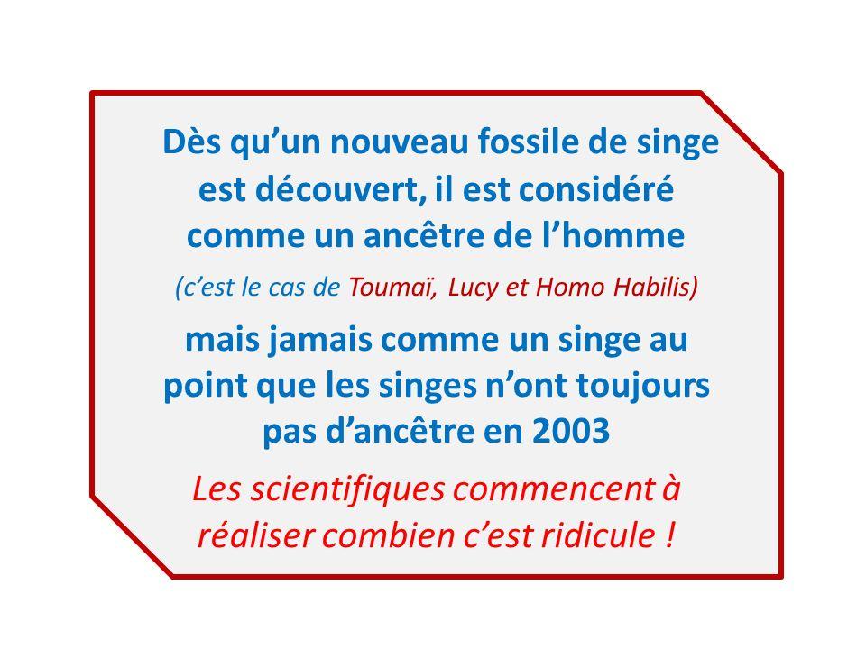 Dès qu'un nouveau fossile de singe est découvert, il est considéré comme un ancêtre de l'homme