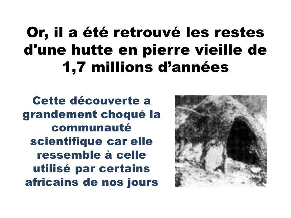 Or, il a été retrouvé les restes d une hutte en pierre vieille de 1,7 millions d'années