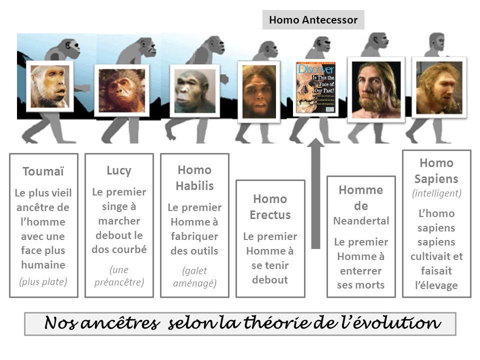 Nos ancêtres selon la théorie de l'évolution