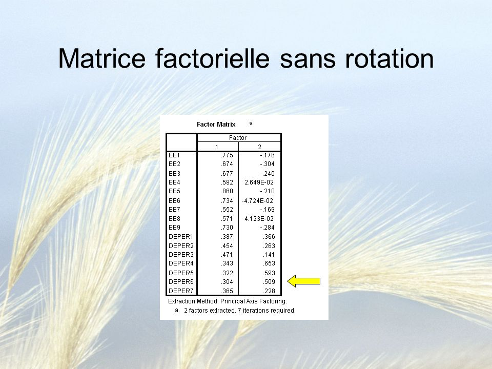 Matrice factorielle sans rotation