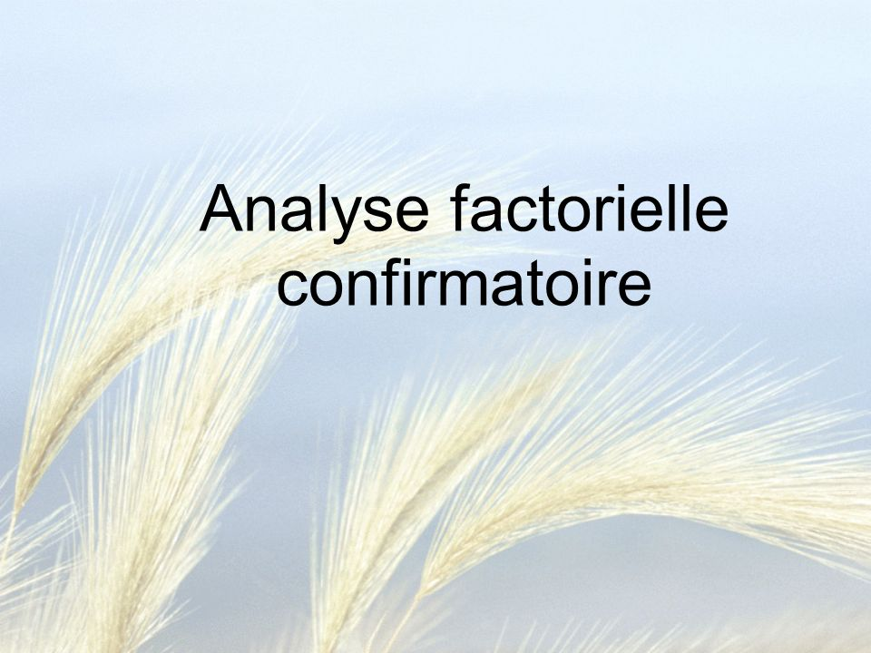 Analyse factorielle confirmatoire