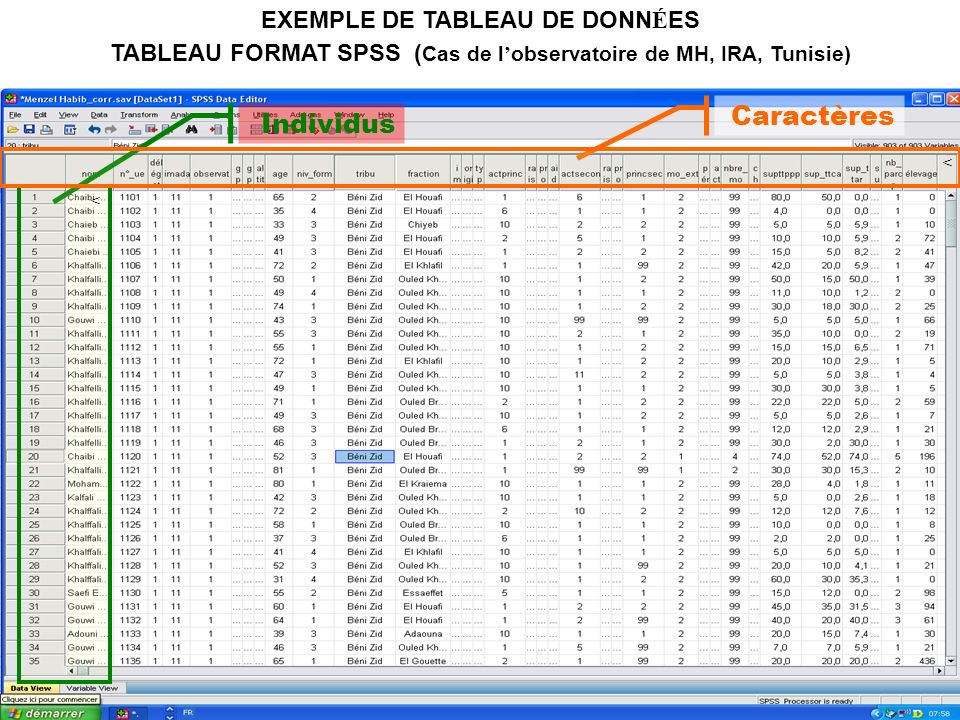 Caractères Individus EXEMPLE DE TABLEAU DE DONNÉES