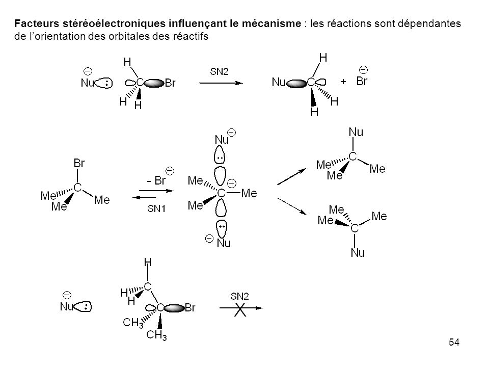 Facteurs stéréoélectroniques influençant le mécanisme : les réactions sont dépendantes de l'orientation des orbitales des réactifs