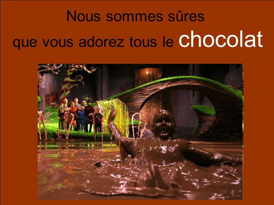 Nous sommes sûres que vous adorez tous le chocolat