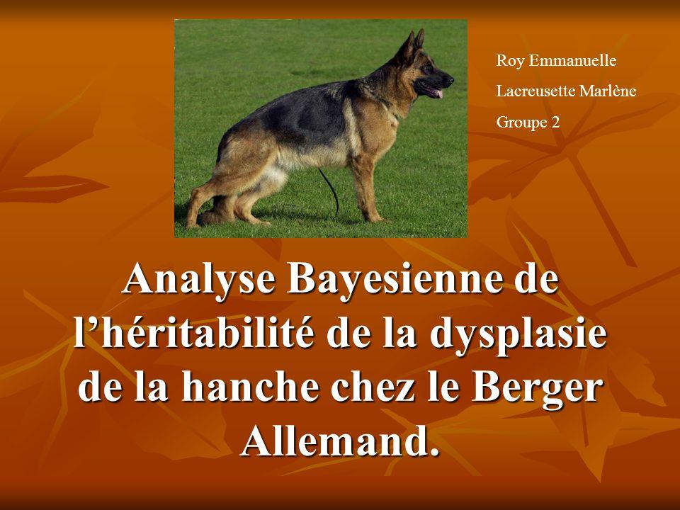 Roy Emmanuelle Lacreusette Marlène. Groupe 2.