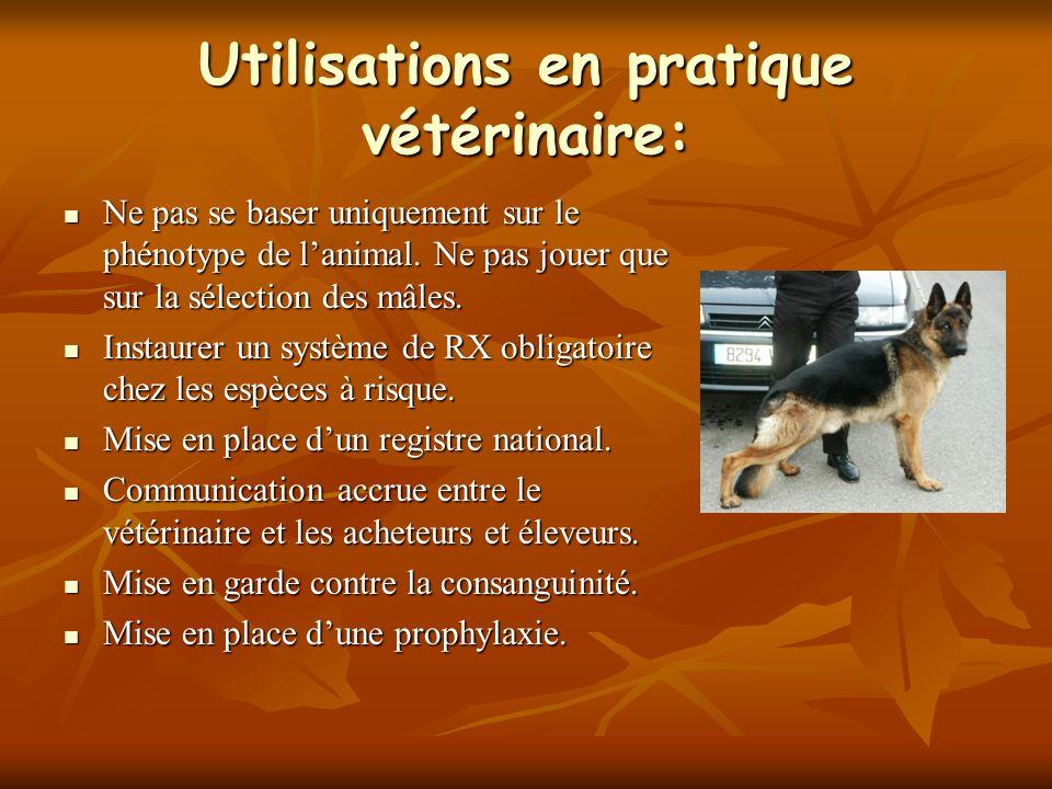 Utilisations en pratique vétérinaire: