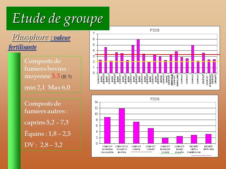 Etude de groupe Phosphore : valeur fertilisante