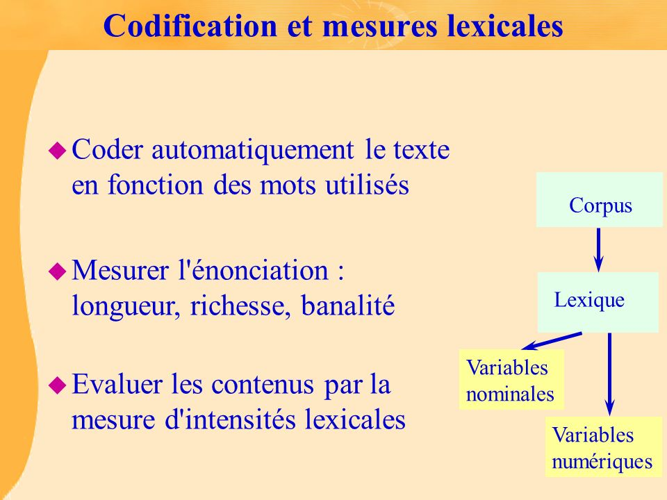 Codification et mesures lexicales