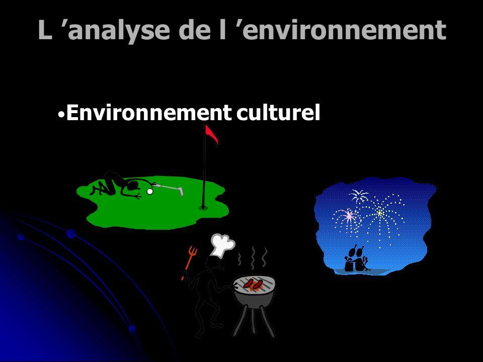 L 'analyse de l 'environnement