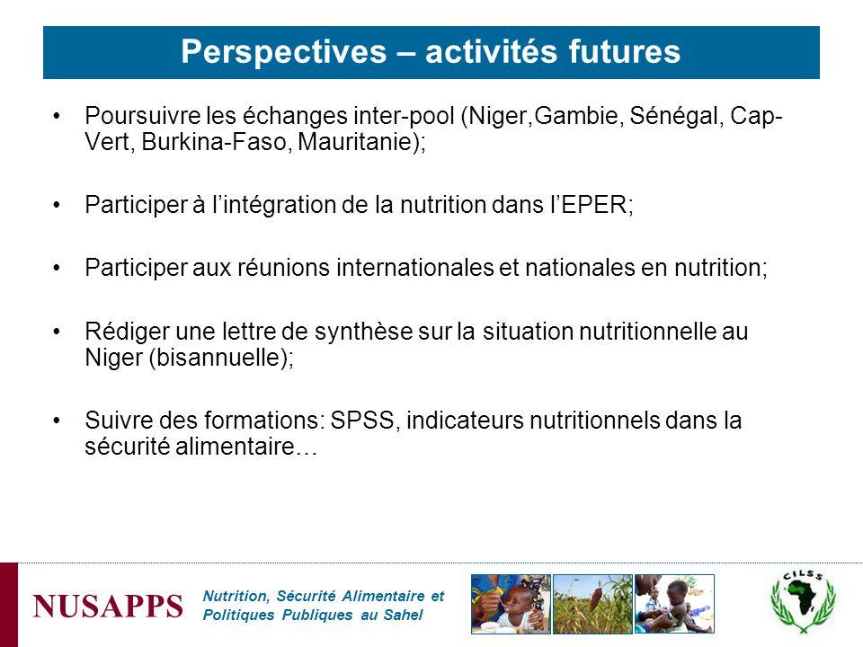 Perspectives – activités futures