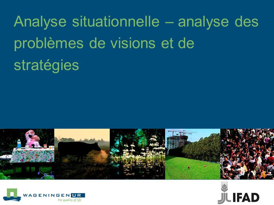 Analyse situationnelle – analyse des problèmes de visions et de stratégies