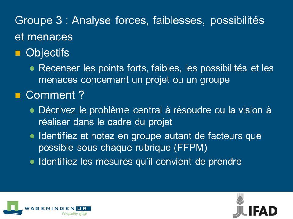Groupe 3 : Analyse forces, faiblesses, possibilités et menaces