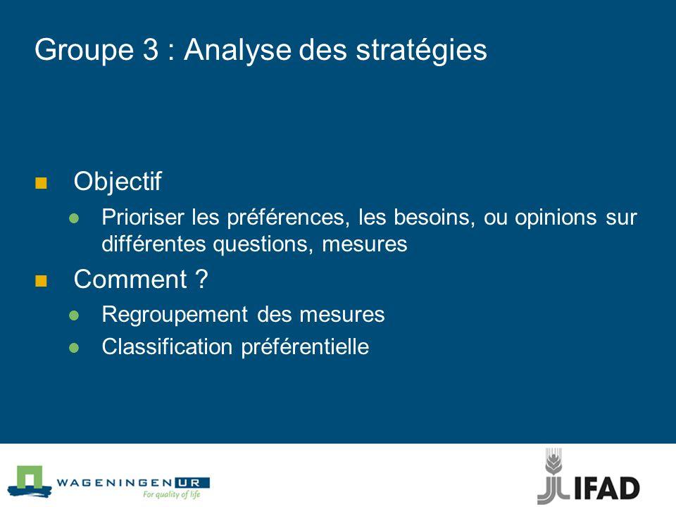 Groupe 3 : Analyse des stratégies
