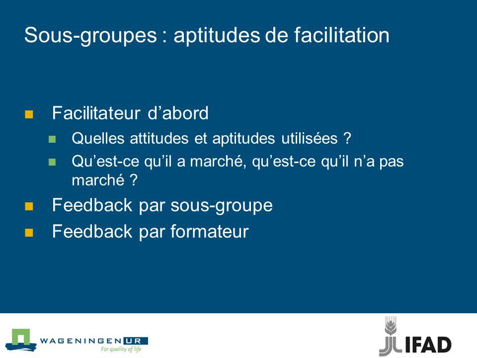 Sous-groupes : aptitudes de facilitation