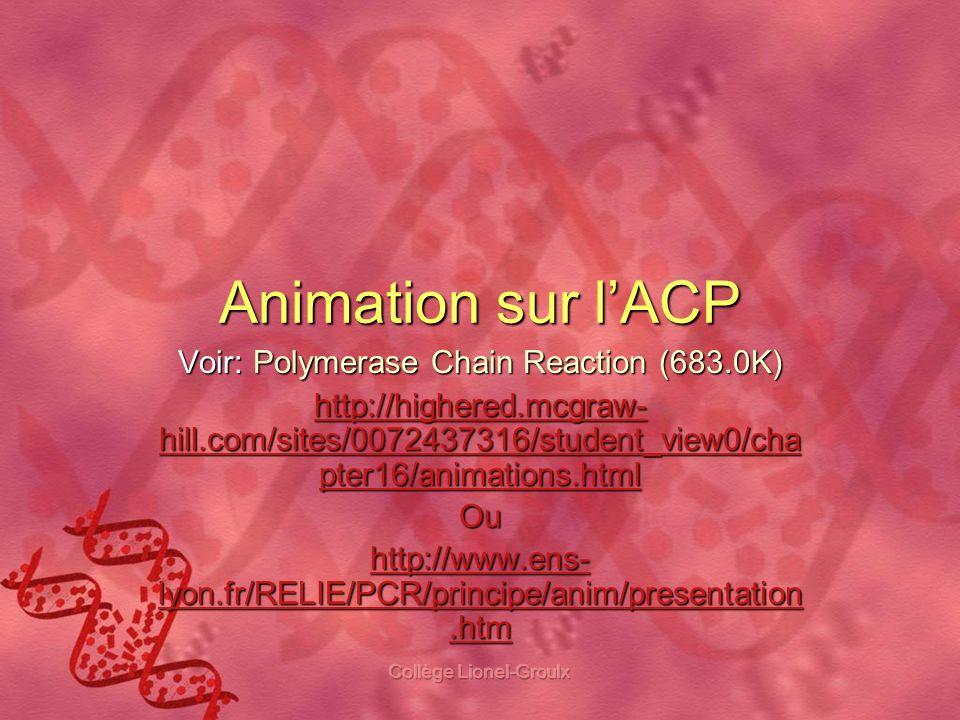 Animation sur l'ACP Voir: Polymerase Chain Reaction (683.0K)
