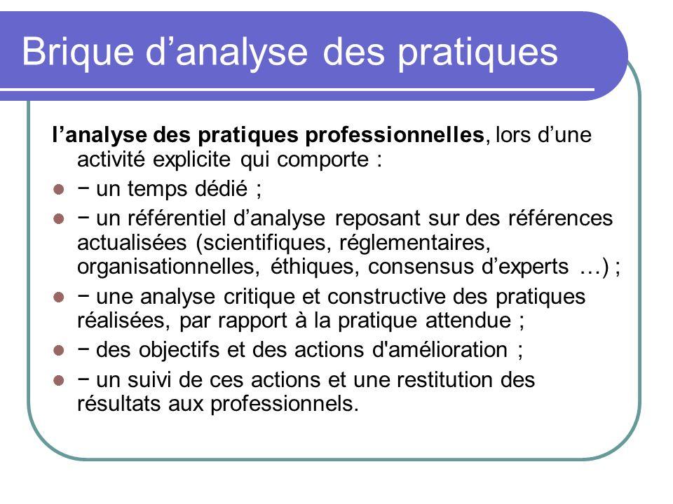 Brique d'analyse des pratiques