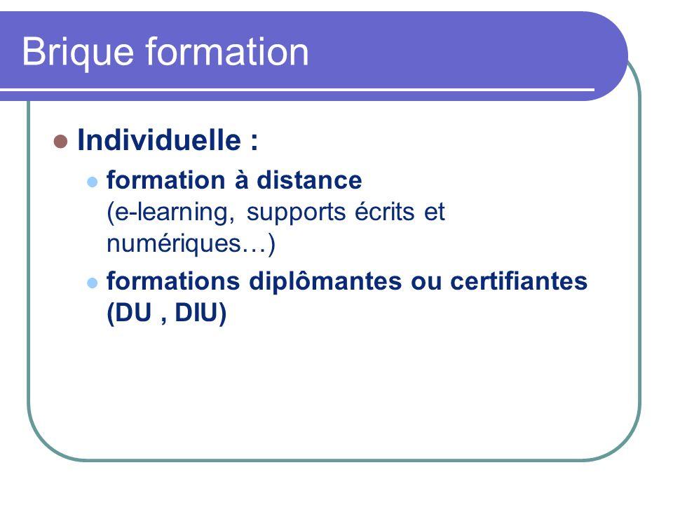 Brique formation Individuelle :