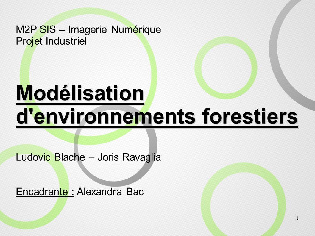 Modélisation d environnements forestiers