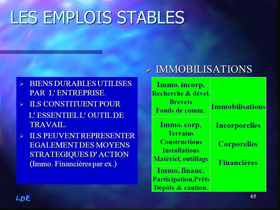 LES EMPLOIS STABLES IMMOBILISATIONS