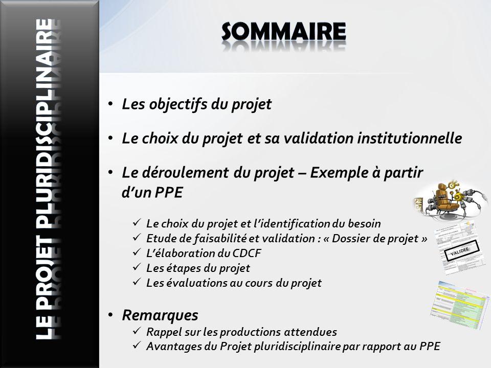 sommaire LE PROJET PLURIdisciplinaire Les objectifs du projet