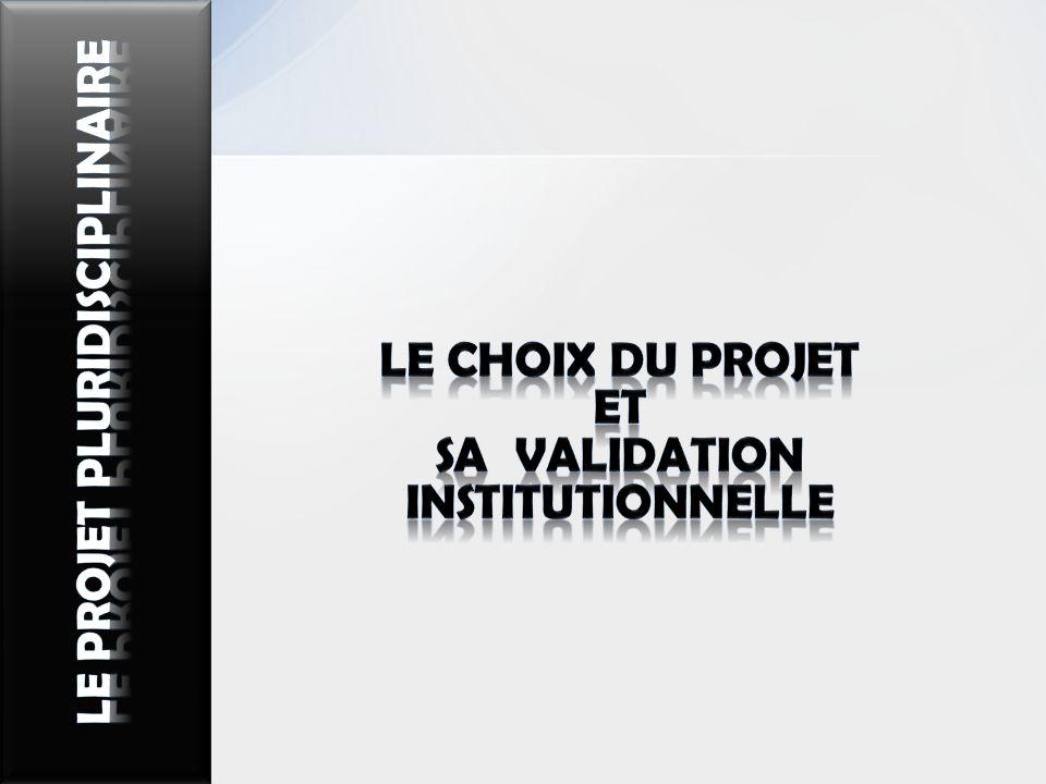 LE CHOIX DU PROJET Et sa validation institutionnelle