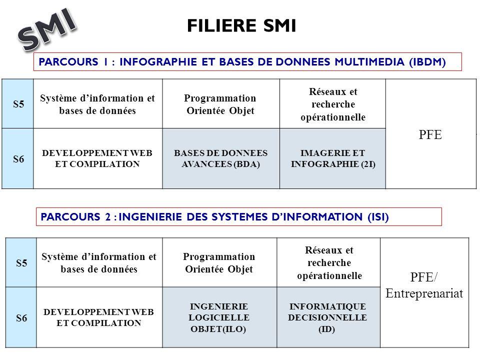 SMI FILIERE SMI PFE PFE/ Entreprenariat