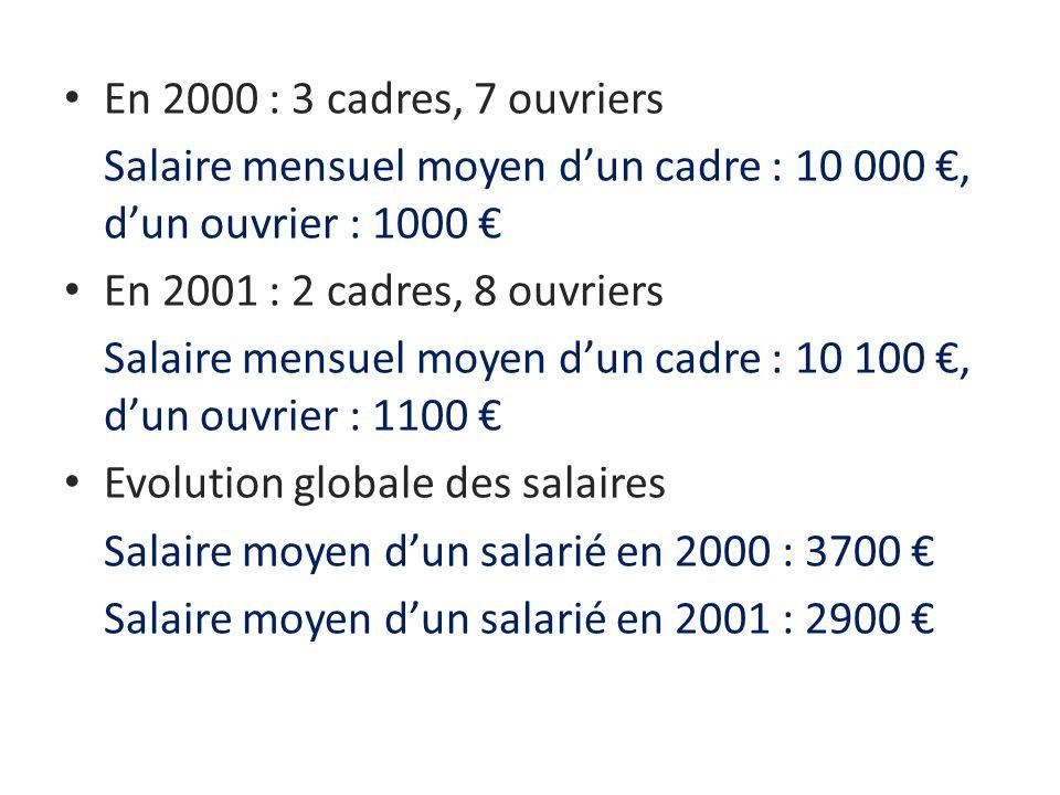 En 2000 : 3 cadres, 7 ouvriers Salaire mensuel moyen d'un cadre : 10 000 €, d'un ouvrier : 1000 € En 2001 : 2 cadres, 8 ouvriers.