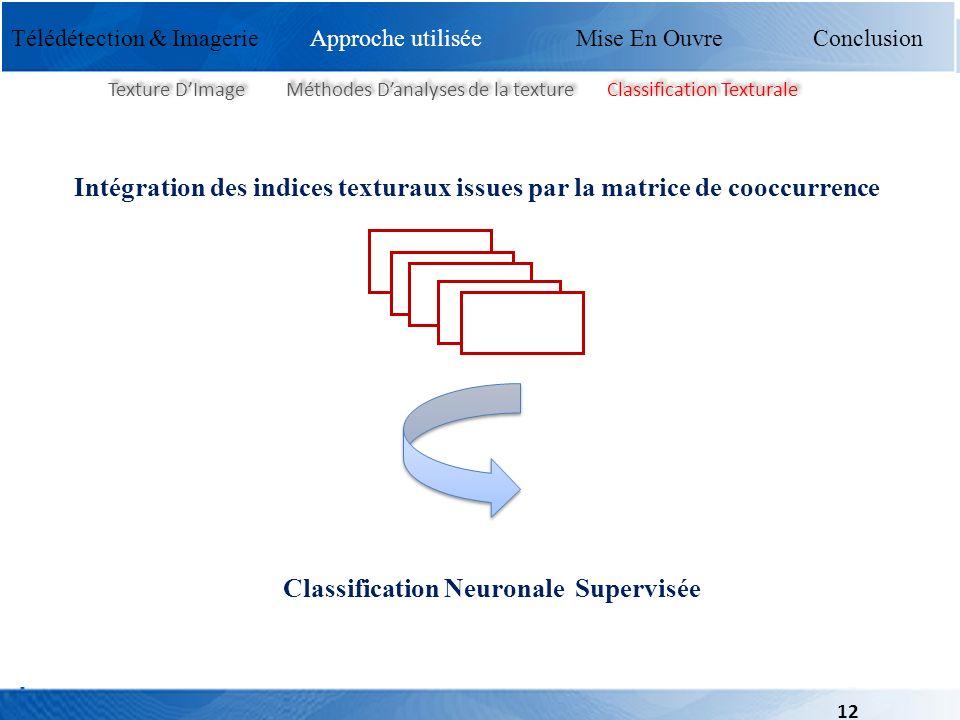 Classification Neuronale Supervisée