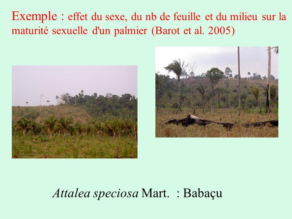 Exemple : effet du sexe, du nb de feuille et du milieu sur la maturité sexuelle d un palmier (Barot et al. 2005)