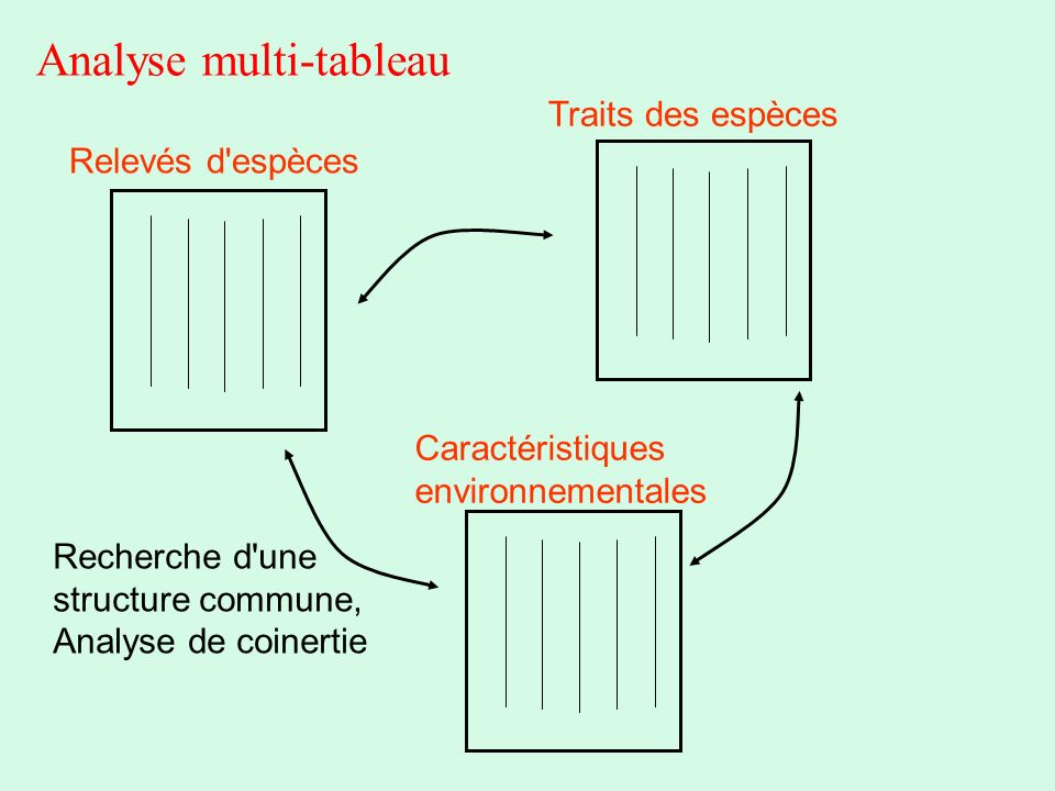 Analyse multi-tableau