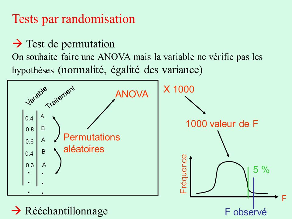 Tests par randomisation