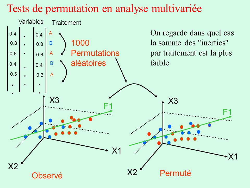 Tests de permutation en analyse multivariée