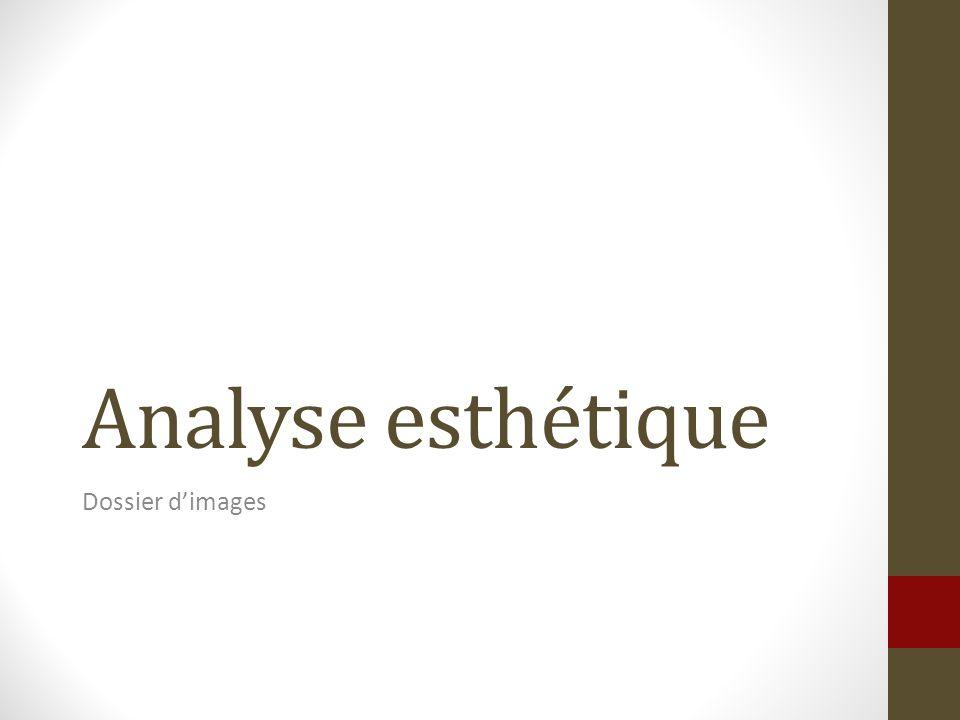 Analyse esthétique Dossier d'images