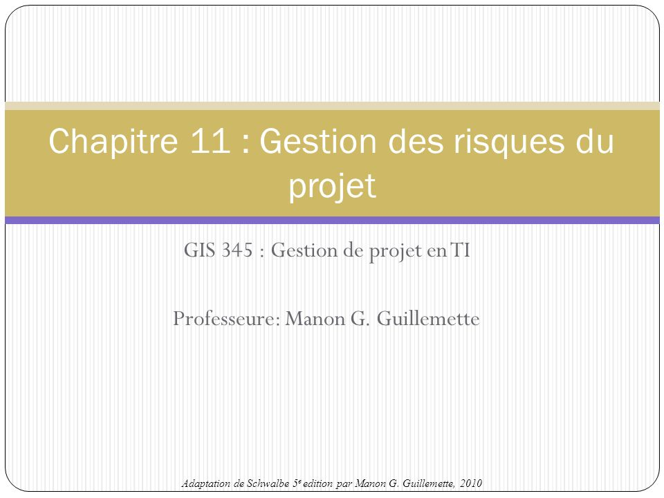 Chapitre 11 : Gestion des risques du projet