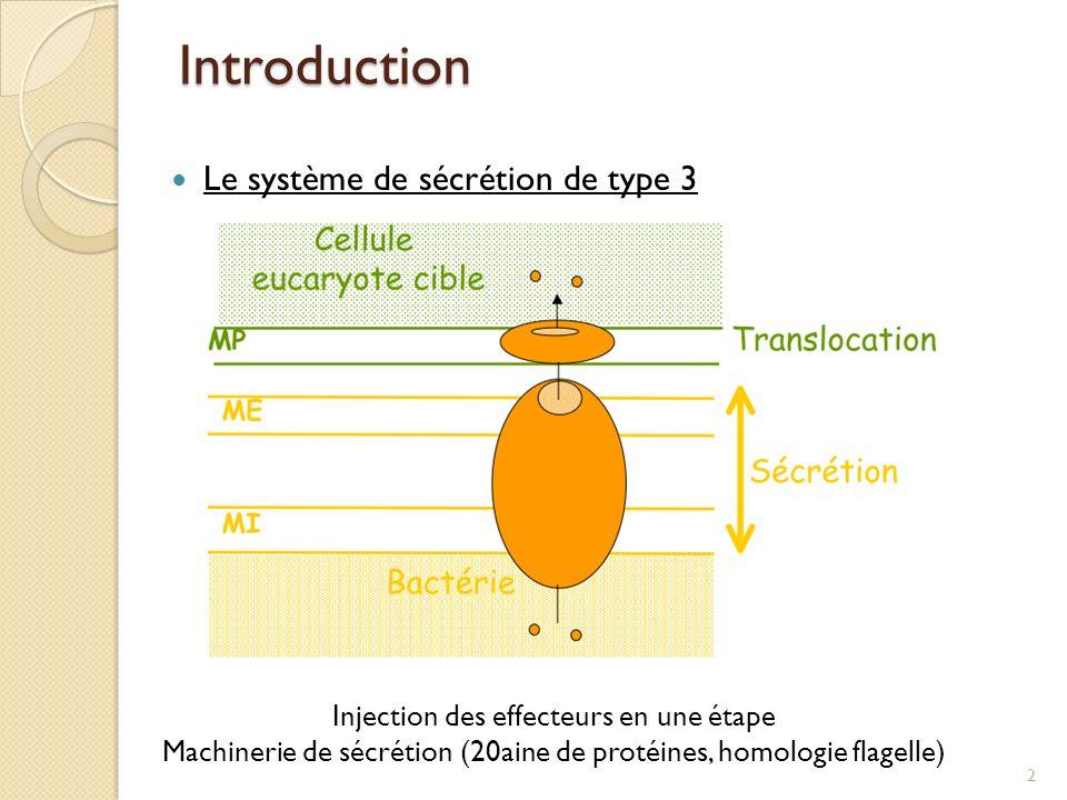 Introduction Le système de sécrétion de type 3