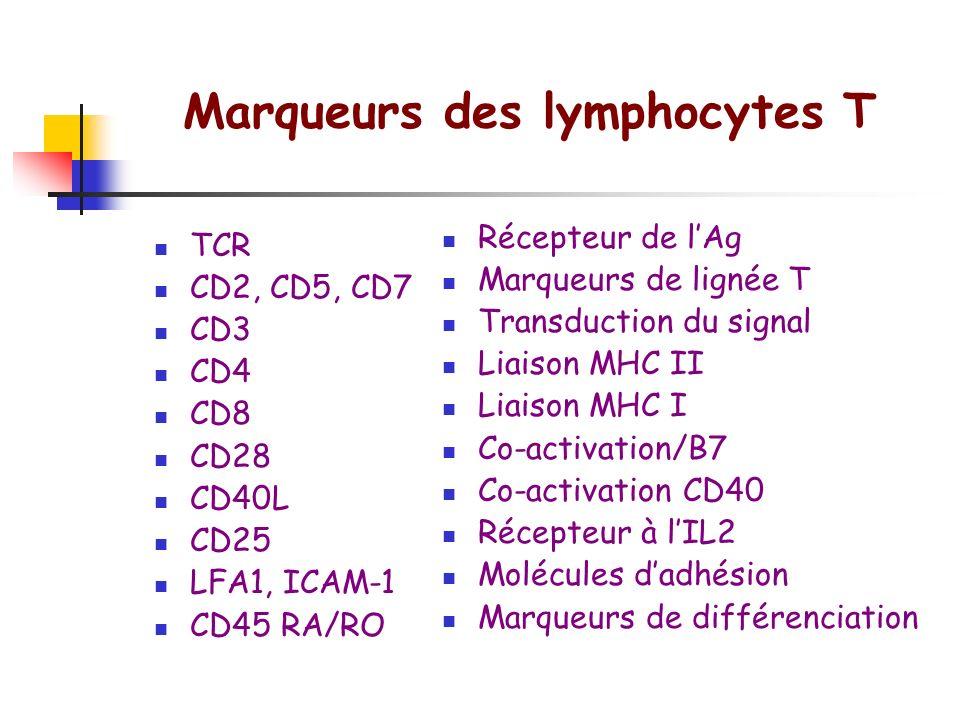 Marqueurs des lymphocytes T