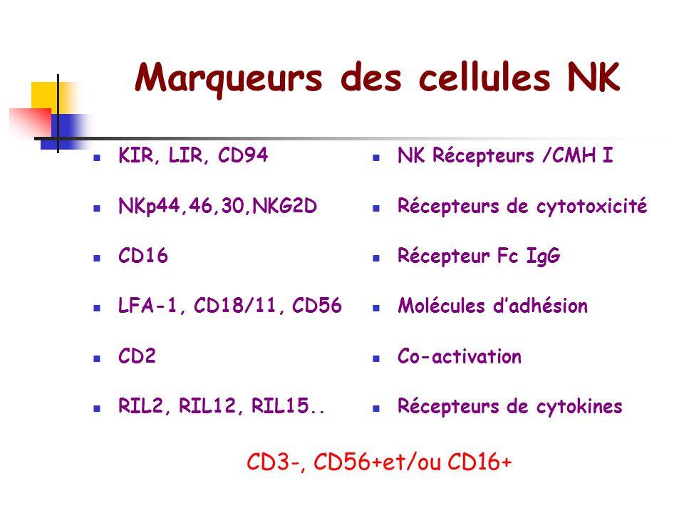 Marqueurs des cellules NK