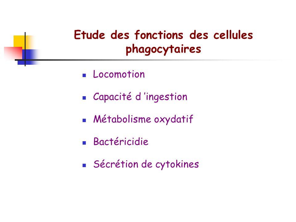 Etude des fonctions des cellules phagocytaires