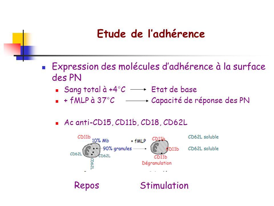 Etude de l'adhérence Expression des molécules d'adhérence à la surface des PN. Sang total à +4°C Etat de base.