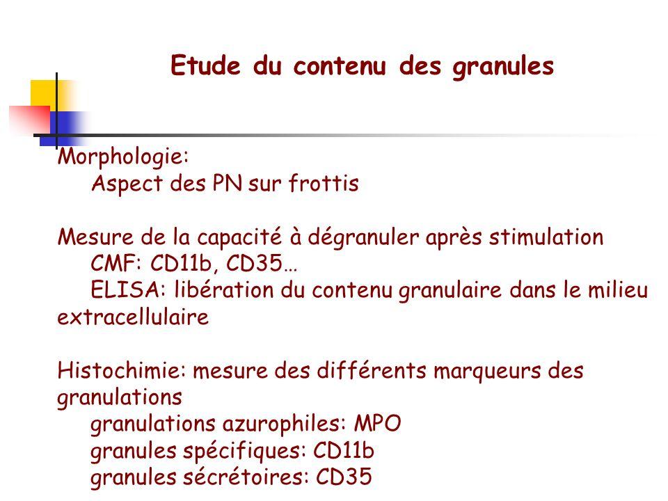 Etude du contenu des granules