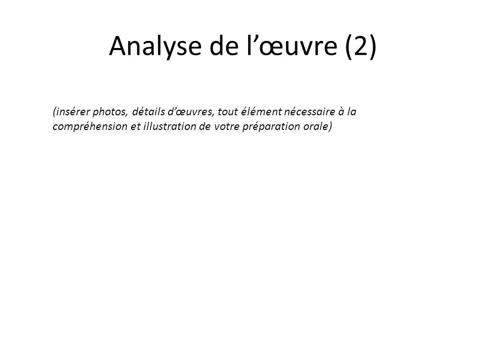 Analyse de l'œuvre (2) (insérer photos, détails d'œuvres, tout élément nécessaire à la compréhension et illustration de votre préparation orale)