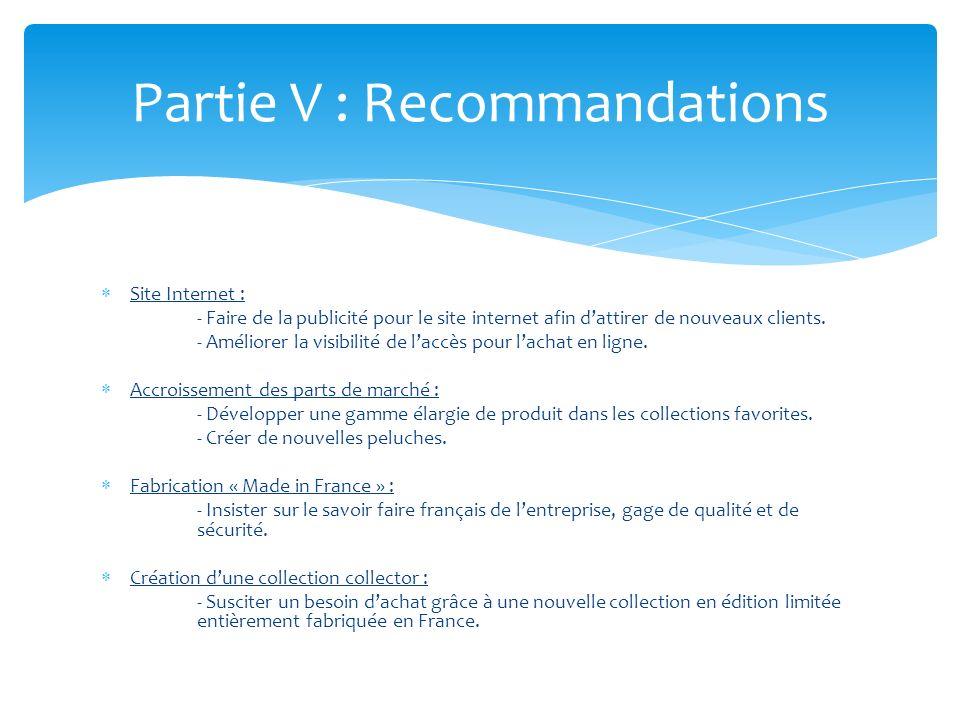Partie V : Recommandations