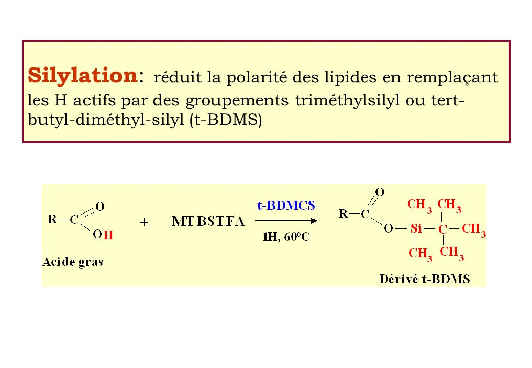 Silylation: réduit la polarité des lipides en remplaçant les H actifs par des groupements triméthylsilyl ou tert-butyl-diméthyl-silyl (t-BDMS)