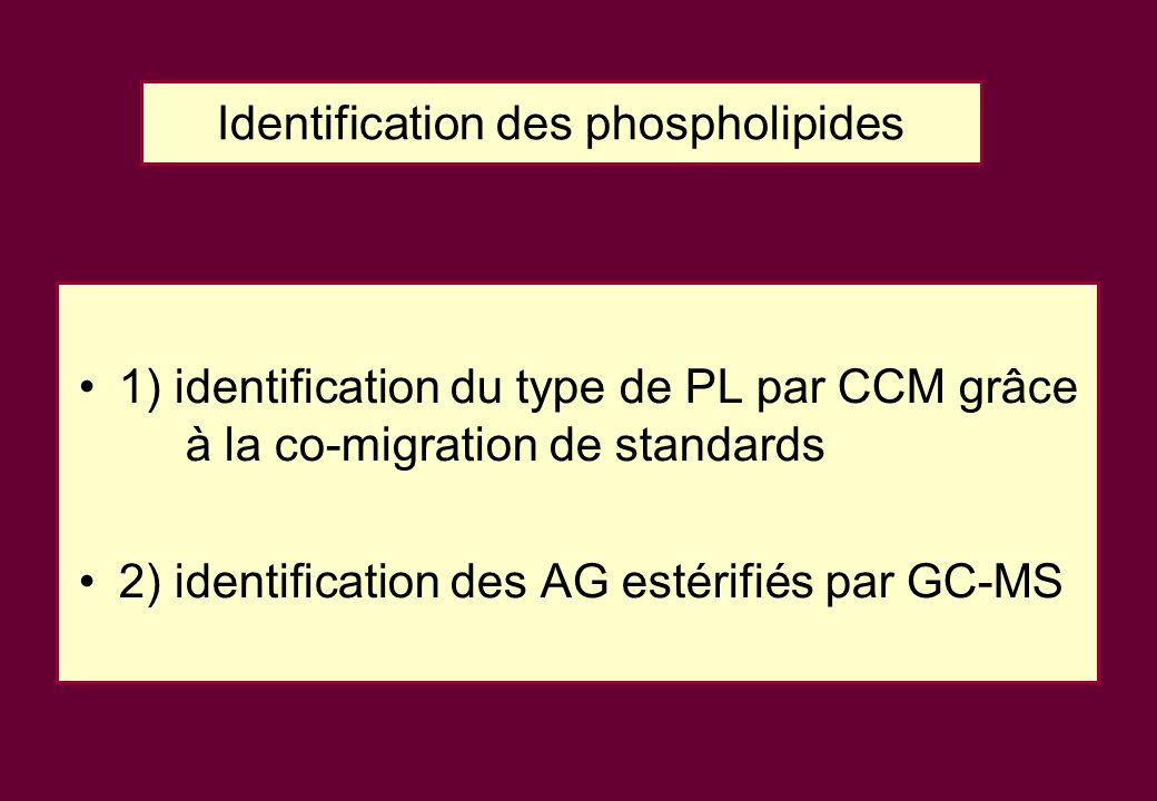 Identification des phospholipides