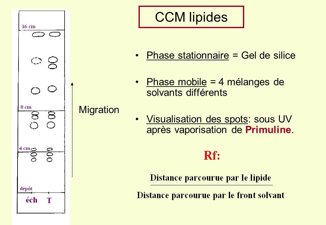 CCM lipides Phase stationnaire = Gel de silice