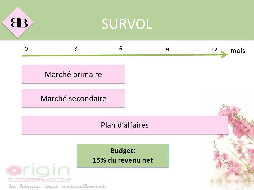 SURVOL Marché primaire Marché secondaire Plan d'affaires mois Budget:
