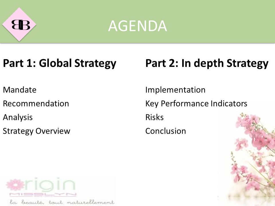 AGENDA Part 1: Global Strategy Part 2: In depth Strategy Mandate